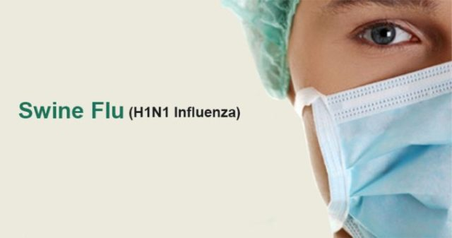 swine-flu-h1n1.jpg